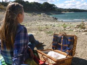 Picnic at Lake Cachuma