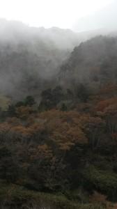 Fog on Gwaneumsa trail