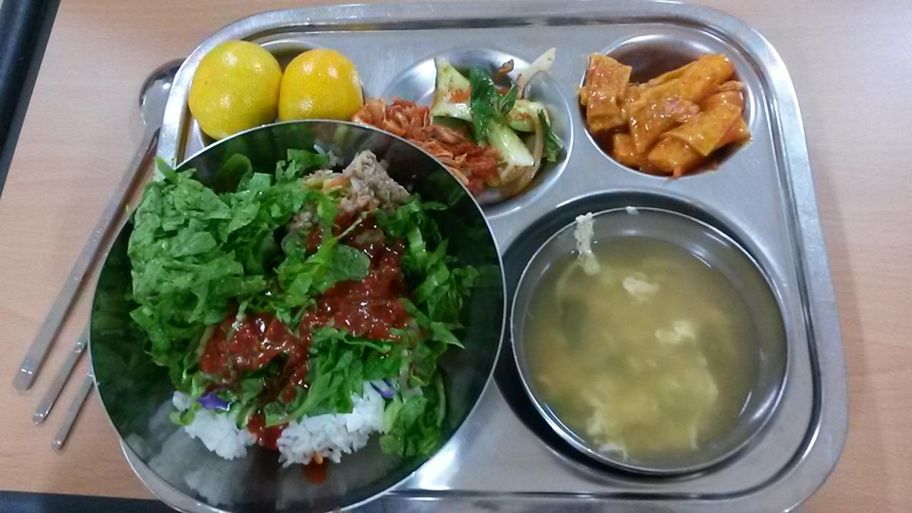 School Lunches in Korea – Tamara Lang
