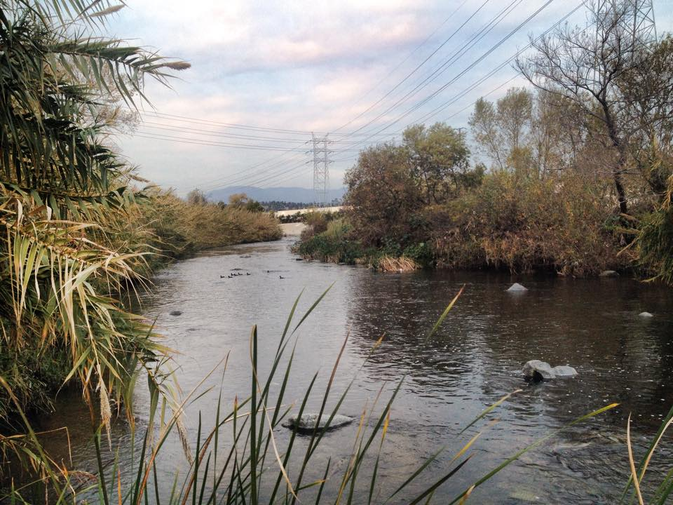 The Los Angeles River at The Frog Spot