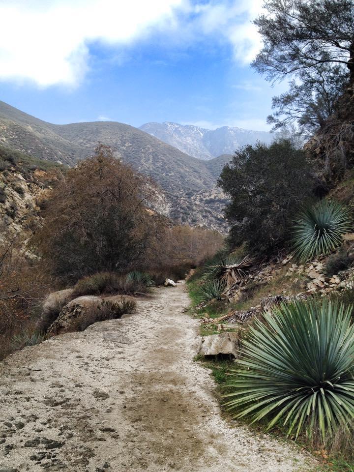 Trail: Bridge to Nowhere